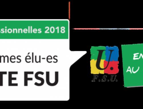 Elections professionnelles 2018 : la FSU confirme son ancrage en Alsace